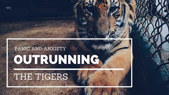 outrunning-tigers-image
