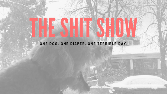 The Shit Show: Please Send Help